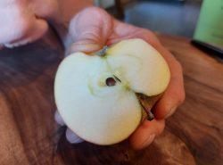 Apfel von Poma Culta