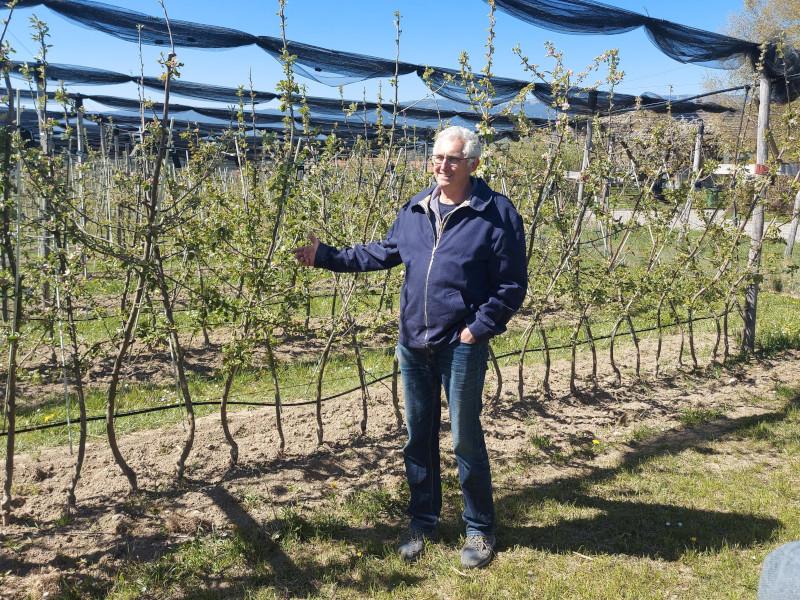 Niklaus Bolliger führt durch seinen Apfelgarten