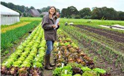 Züchterin Ulrike Behrendt in einem Feld mit Salatpflanzen